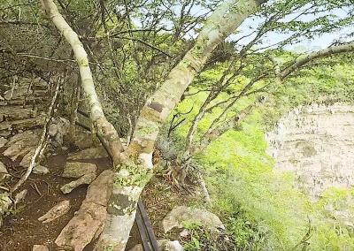 Sima de las Cotorras – Chiapas
