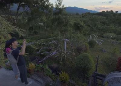 Uncover Hidden Vineyards in Myanmar