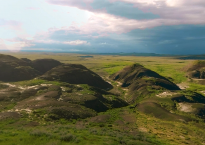 Grasslands in 360º